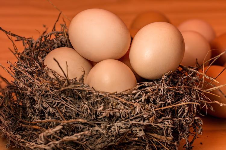 """Производитель рассказал, почему выпустил """"девяток"""" яиц вместо """"десятка"""""""