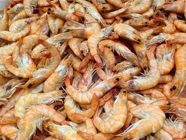 Десятки тысяч мертвых креветок нашли на одном из пляжей в Италии