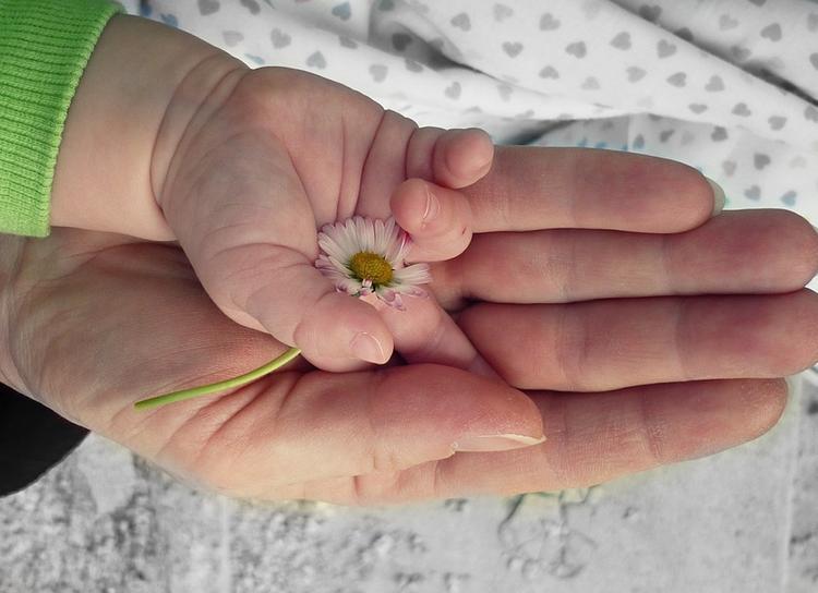В России могут изменить условия для получения статуса родителя-одиночки