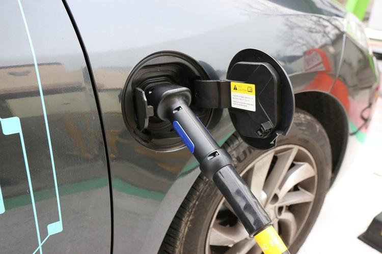 «Автомобилисты России» высказались против зеленых номеров для электромобилей