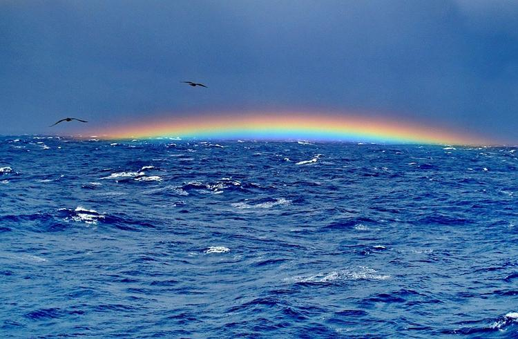 """В Тихом океане обнаружили """"Бермудский треугольник"""""""