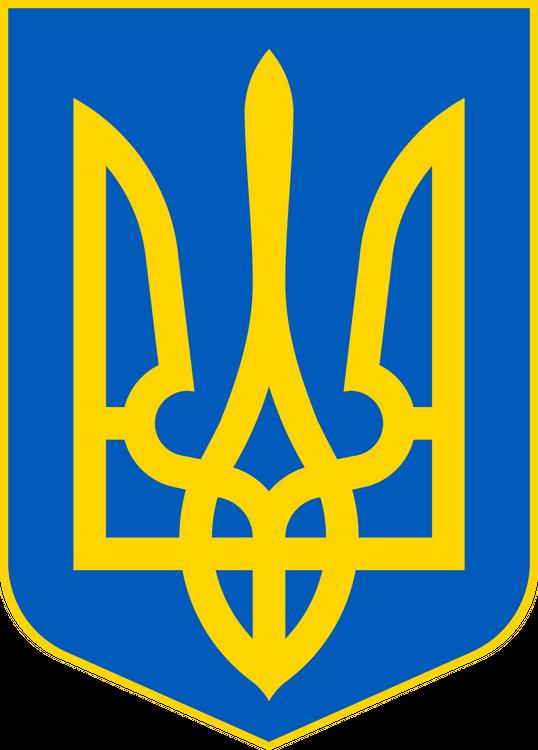 Почти все кандидаты в президенты Украины нарушили закон