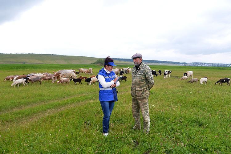 Российская аграрная олигархия пилит 200 млрд рублей в год