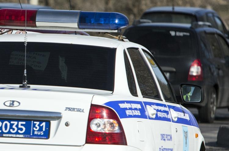 Сотрудники ГАИ спасли в Подмосковье троих детей, гулявших по краю дороги