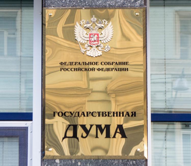 Госдума РФ приняла налоговые льготы для многодетных семей