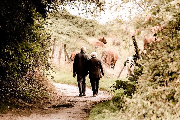 Названа оптимальная продолжительность прогулки на свежем воздухе для снижения стресса