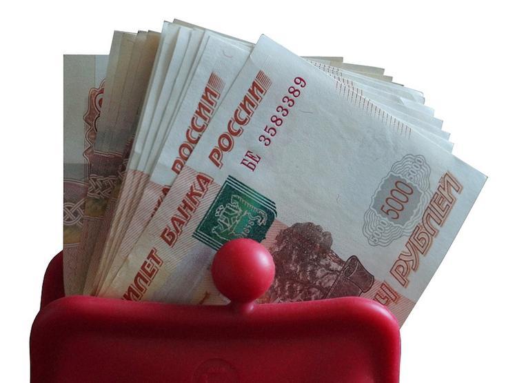 Граждане России назвали уровень дохода для достойной жизни