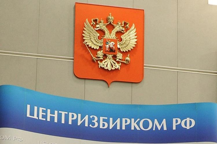 ЦИК РФ: Треть российских партий может исчезнуть к концу 2019 года