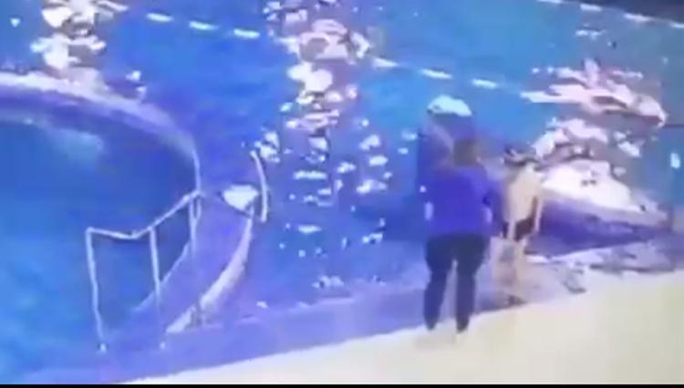 В сети появилось видео тонущего мальчика в бассейне