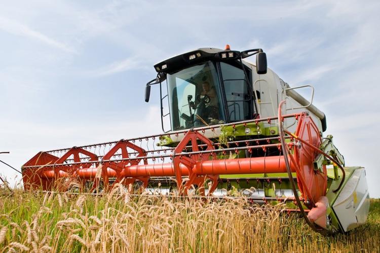 Хабаровский край получил три медали за развитие сельского хозяйства