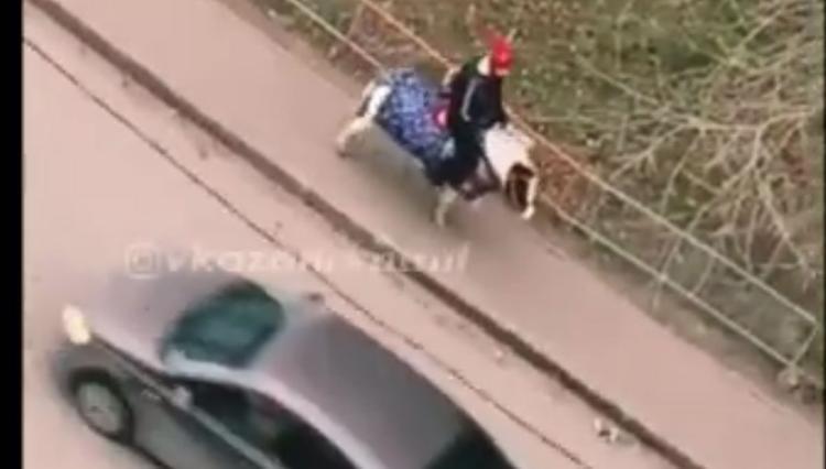 Видео поездки школьника на пони по улицам Казани растрогало жителей города