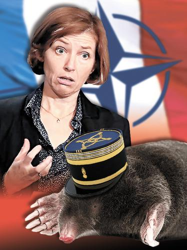 Министр обороны Франции Флоранс Парли обвинила в предательстве высокопоставленного офицера