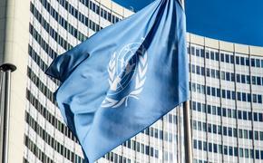 Британский политик грубо перебил постпреда РФ Небензю в ходе заседания СБ ООН по Украине
