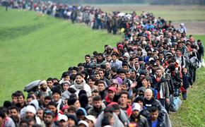 Квалифицированные мигранты переключились на Запад. В Россию едут неграмотные