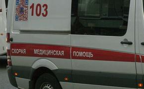 В Алтайском крае женщина погибла под колесами фуры, спасая своих детей