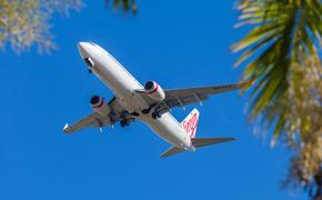 В Германии самолет застрял в древесной кроне