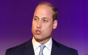 Принца Уильяма подвергли критике за его отношение к старшим детям