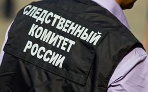 СК: Возбуждено уголовное дело по факту гибели годовалой девочки на юге Москвы