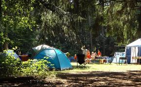 12 детей пострадали от кишечной инфекции  в  лагере под Красноярском