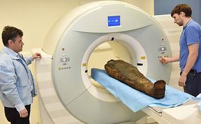 В Москве провели томографию египетской мумии. Ученые изучают скелет человека, жившего более 2 тысяч лет назад