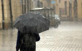 В Роскачестве дали рекомендации по выбору хорошего зонта