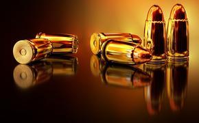 В Новом Уренгое задержаны злоумышленники, незаконно поставлявшие оружие  из Украины и Литвы