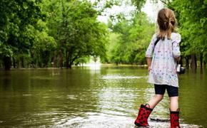 Эпидемиолог рассказал, как избежать заражения инфекцией после наводнения