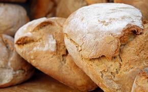 В Роспотребнадзоре рассказали, как правильно выбирать и хранить хлеб