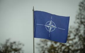 СМИ: в докладе НАТО были случайно раскрыты места размещения американского ядерного оружия