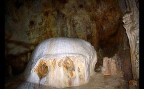 Биологические находки карстовой пещеры в Крыму удивили учёных