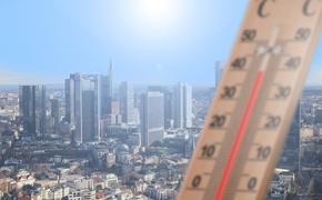 В Россию может прийти аномальная жара