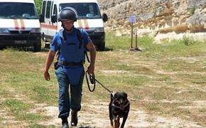 Сотрудники МЧС  на территории крепости Керчь нашли  600 боеприпасов разных калибров времен ВОВ