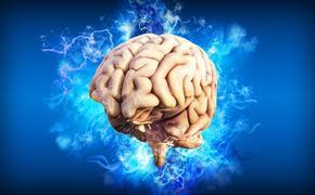 Ученые: ежедневная физическая активность способна замедлить развитие болезни Альцгеймера