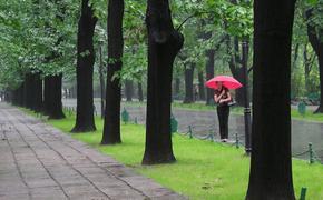 Синоптики: дождливый июль в Москве является нормой