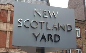 Хакеры взломали сайт, электронную почту и Twitter Скотленд-Ярда