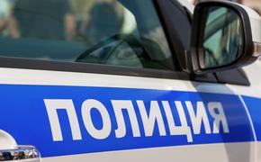 МВД: на востоке Москвы слышали звуки стрельбы из автомобиля