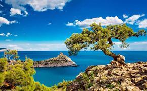 В Крыму подсчитали, какой ущерб в сфере туризма был нанесен  за время пребывания в составе Украины