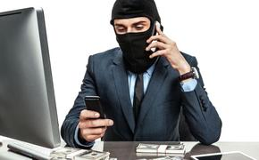 Топ самых распространённых видов мошенничества в Крыму