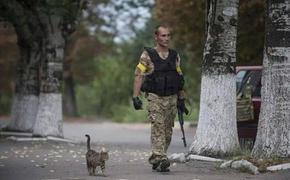 Володин назвал ответственных за окончание войны в Донбассе