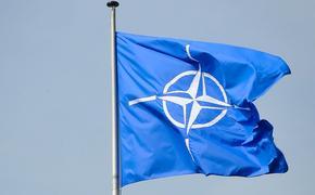 НАТО осуждает теракт на свадьбе в Кабуле