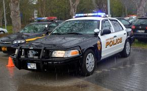 Американские полицейские предотвратили три случая массовой стрельбы