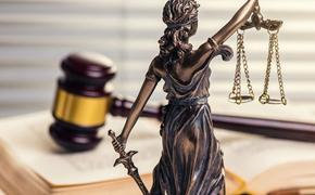 Двадцать процентов компаний на юридическом рынке Москвы - лжеюристы