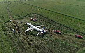 Видео демонтажа самолёта Airbus A321 после его экстренного приземления на кукурузном поле