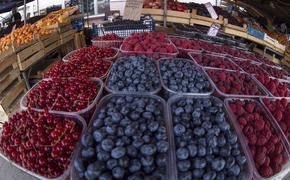 Семь самых полезных продуктов для здоровья сосудов перечислили специалисты