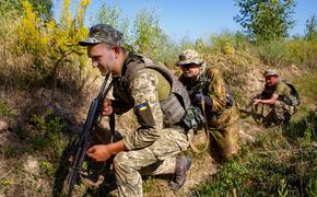 Украинский историк призвал готовиться к «возобновлению боевых действий» с РФ