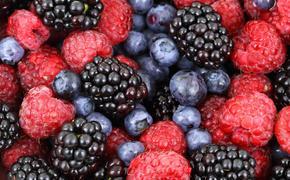 Жителям Подмосковья напомнили об опасности ядовитых ягод