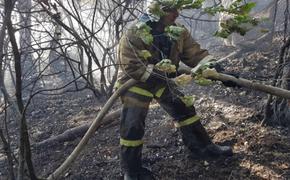 Сто человек тушили крупный пожар на Южном берегу Крыма
