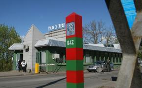 Электронные визы в РФ могут «навредить» Эстонии