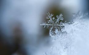 Первый снег выпал в Подмосковье
