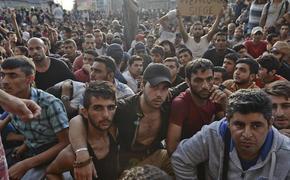 Что делать с наплывом мигрантов в Европе и России?
